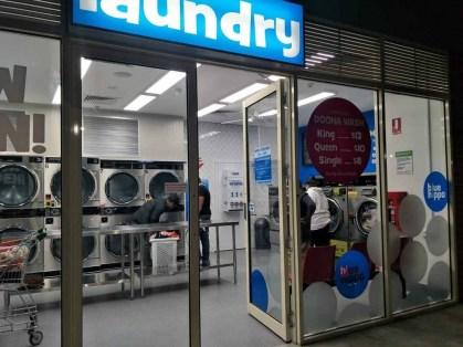 Newcomb-Laundromat-Blue-Hippo