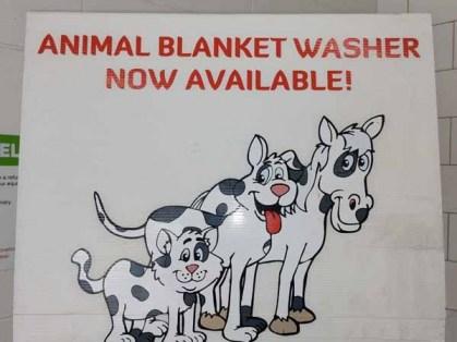 Pet-Blanket-Washer-Norlane