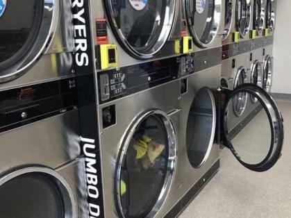 Tarneit-Laundry-Blue-Hippo