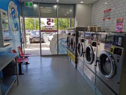 Caroline Springs Blue Hippo Laundry